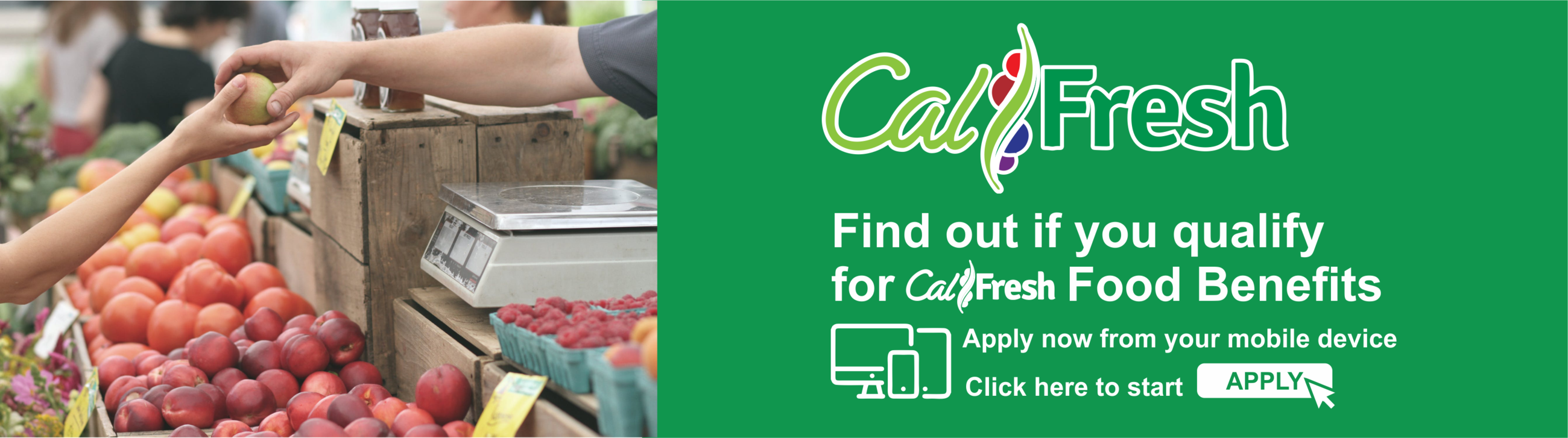 CalFresh Opens in new window